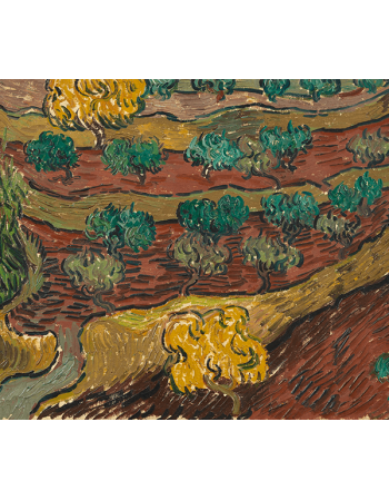 Reprodukcje obrazów Vincent van Gogh Olive Trees on a Hillside