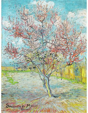Reprodukcje obrazów Peach Blossoms - Vincent van Gogh