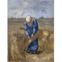 Reprodukcje obrazów Peasant woman binding sheaves - Vincent van Gogh
