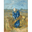 Reprodukcje obrazów Peasant Woman Binding Sheaves (after Millet) - Vincent van Gogh