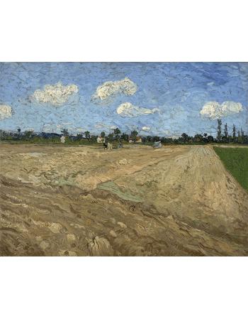 Reprodukcje obrazów Vincent van Gogh Plowed fields