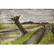 Reprodukcje obrazów Vincent van Gogh Pollard willow