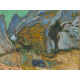 Reprodukcje obrazów Vincent van Gogh Ravine with a Small Stream