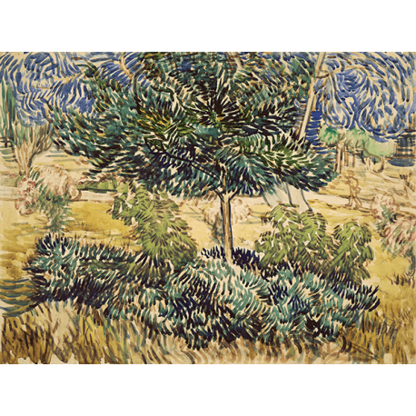Reprodukcje obrazów Vincent van Gogh Tree and Bushes in the Garden of the Asylum