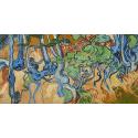 Reprodukcje obrazów Tree Roots - Vincent van Gogh