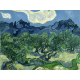 Reprodukcje obrazów Vincent van Gogh The Olive Trees