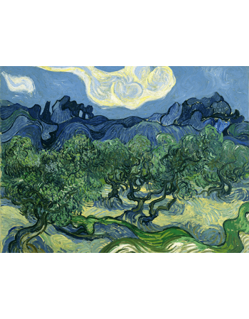 Reprodukcje obrazów Vincent van Gogh The Olive Trees