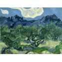 Reprodukcje obrazów The Olive Trees - Vincent van Gogh