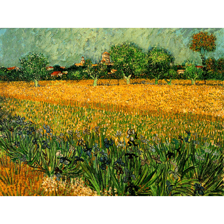 Reprodukcje obrazów Vincent van Gogh View of arles with irises in the foreground