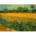 Reprodukcje obrazów View of arles with irises in the foreground - Vincent van Gogh