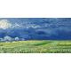 Reprodukcje obrazów Vincent van Gogh Wheatfield under thunder clouds