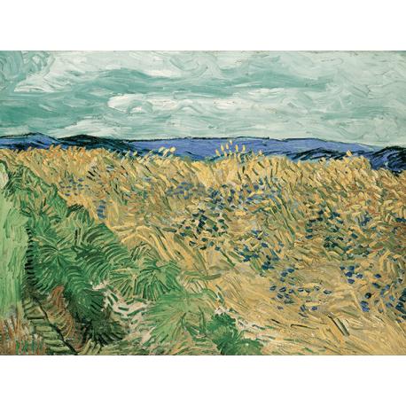 Reprodukcje obrazów Vincent van Gogh Wheatfield With Cornflowers