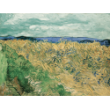 Reprodukcje obrazów Wheatfield With Cornflowers - Vincent van Gogh