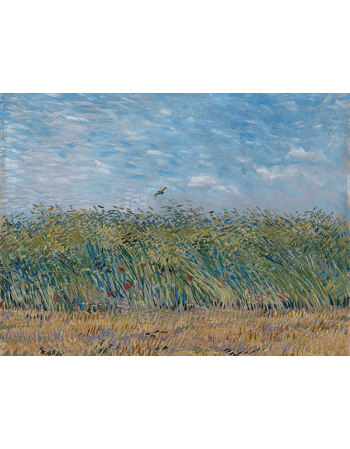 Reprodukcje obrazów Vincent van Gogh Wheatfield with Partridge
