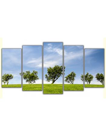 Zielone drzewa