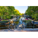 Rower na moście - Amsterdam
