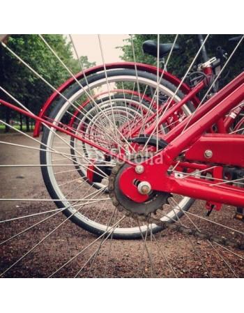 Czerwone rowery