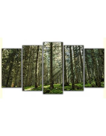 Obraz na płótnie poliptyk Promienie słoneczne w lesie