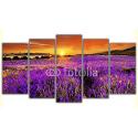 Zachód słońca w Prowansji - lawenda