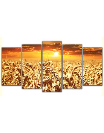 Obraz na płótnie poliptyk Zboże - zachód słońca