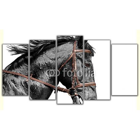 Obraz na płótnie poliptyk Czarny koń