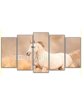 Obraz na płótnie poliptyk Galopujący koń