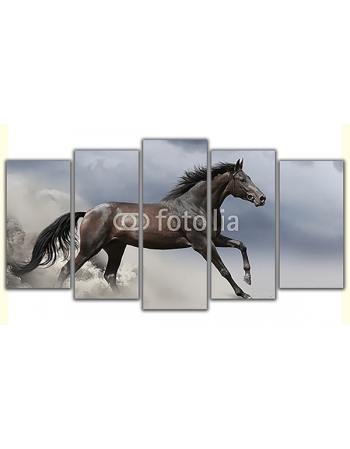 Obraz na płótnie poliptyk Pędzący koń