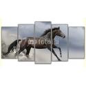 Pędzący koń