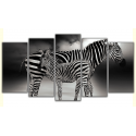Piękne zebry