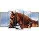 Obraz na płótnie poliptyk Piękny koń