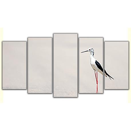 Obraz na płótnie poliptyk Ptak na pustynii