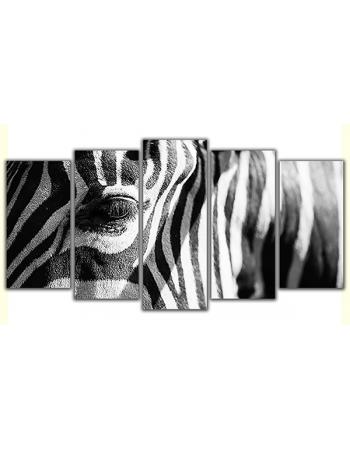 Obraz na płótnie poliptyk Zebra