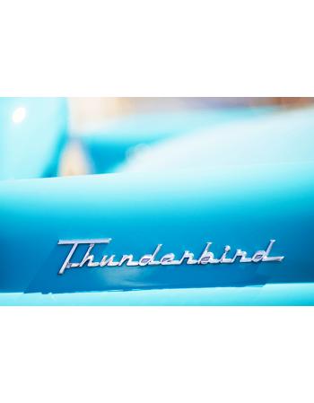 Obraz na płótnie Thunderbird
