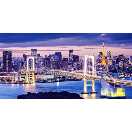 Obraz na płótnie - Fedkolor - Tokio