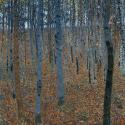 Reprodukcje obrazów Gustav Klimt Beech Grove I - Gustav Klimt