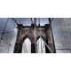 Obraz na płótnie-Fedkolor-Brooklyn Bridge