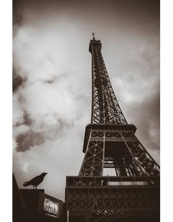 Obraz na płótnie-Fedkolor-Wieża Eiffla