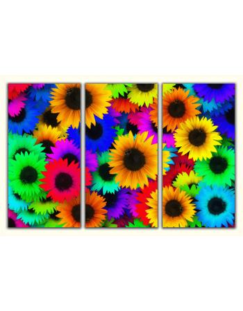 Obraz-na-płótnie-tryptyk-Kolorowe słoneczniki