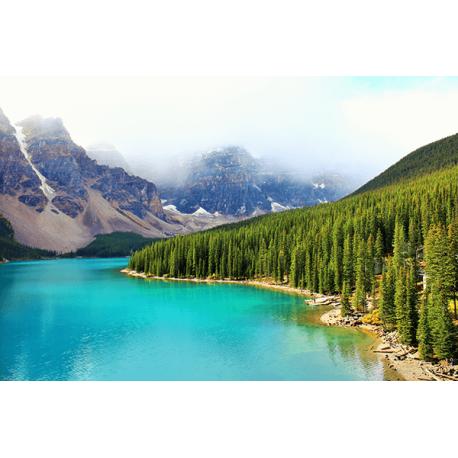 Obraz na płótnie Pejzaz gorski - Las