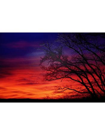 Obraz na płótnie Zachód Słońca