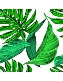 Liść - Jungle