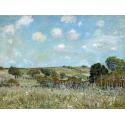 Reprodukcje obrazów Meadow - Alfred Sisley