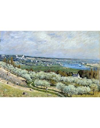 Reprodukcje obrazów The Terrace at Saint-Germain, Spring - Alfred Sisley