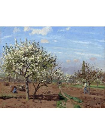 Reprodukcje obrazów Le verger - Camille Pissarro