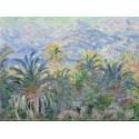 Reprodukcje obrazów Palm Trees at Bordighera - Claude Monet