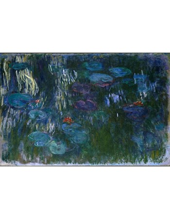 Water Lilies_1