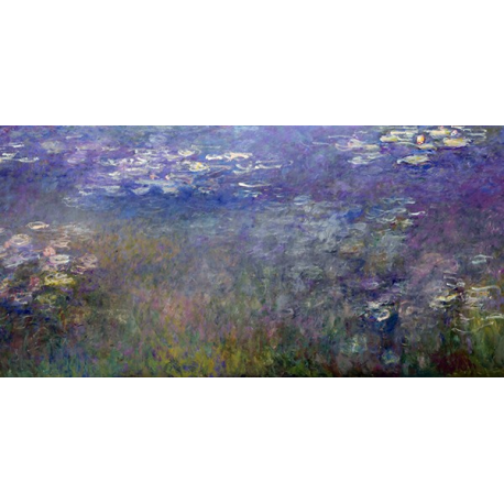 Water Lilies_2