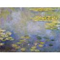 Reprodukcje obrazów Waterlilies - Claude Monet
